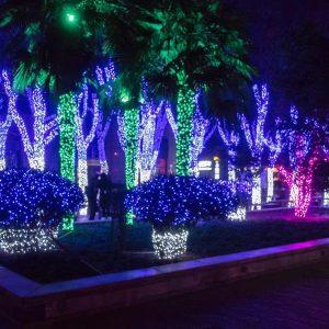 Festival of Lights Galveston