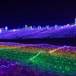 Lights Festival Las Vegas