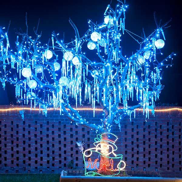 Oglebay Lights Festival
