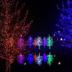 Mount Stewart Festival of Lights