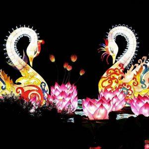 Swan Festival of Lights