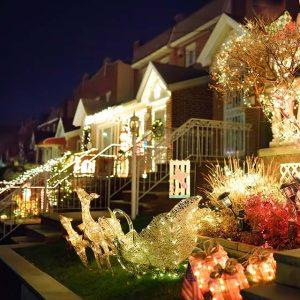 Festival of Lights Brooklyn